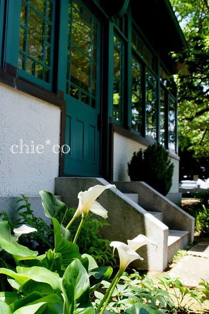 イタリア山庭園-139