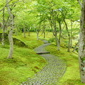 写真: 箱根美術館-181
