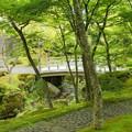 写真: 箱根美術館-189