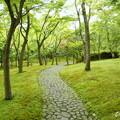 写真: 箱根美術館-190