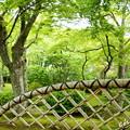 写真: 箱根美術館-196