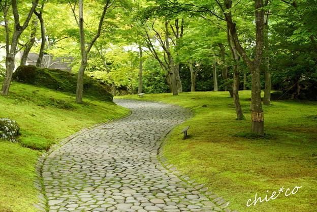 箱根美術館-209