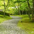写真: 箱根美術館-209
