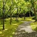 写真: 箱根美術館-211
