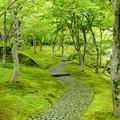 写真: 箱根美術館-218
