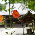 鎌倉-142