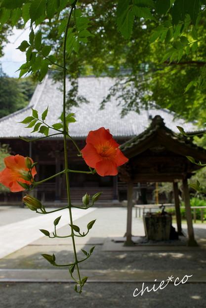 鎌倉-145