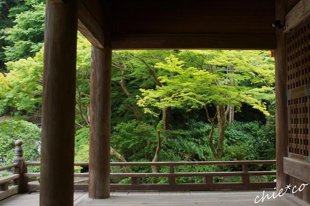 鎌倉-149