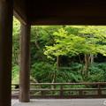 写真: 鎌倉-149