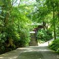 写真: 鎌倉-157