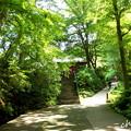 写真: 鎌倉-165