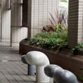 写真: Yokohama-085