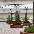 写真: Yokohama-089