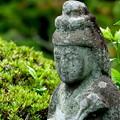 写真: 鎌倉-553
