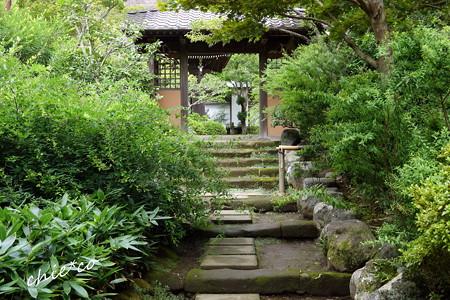 鎌倉-560