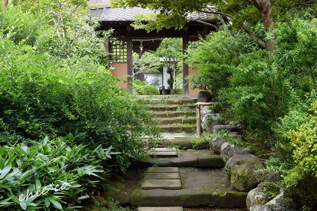 写真: 鎌倉-560