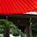写真: 鎌倉-515