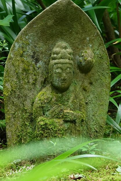 写真: 鎌倉-593