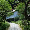 写真: 鎌倉-601
