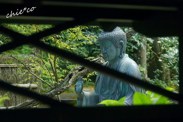 写真: 鎌倉-602