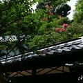 鎌倉-613