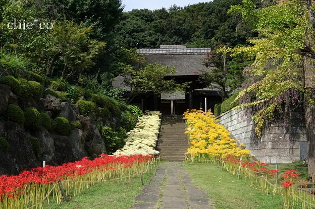 写真: 西方寺-068