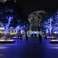写真: Yokohama-059