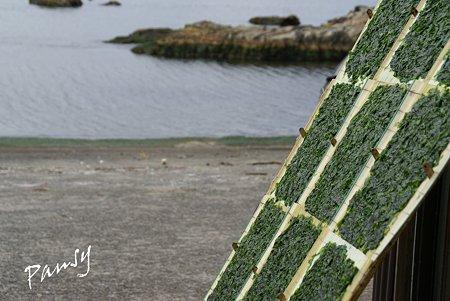 海苔を干す海辺・・