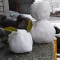 Photos: 雪の精たち