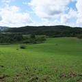 八幡高原の景色