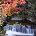 写真: 渓流の秋