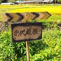 Photos: 171009 (73)地蔵尊7番札所