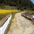 Photos: 171009 (75)木造橋