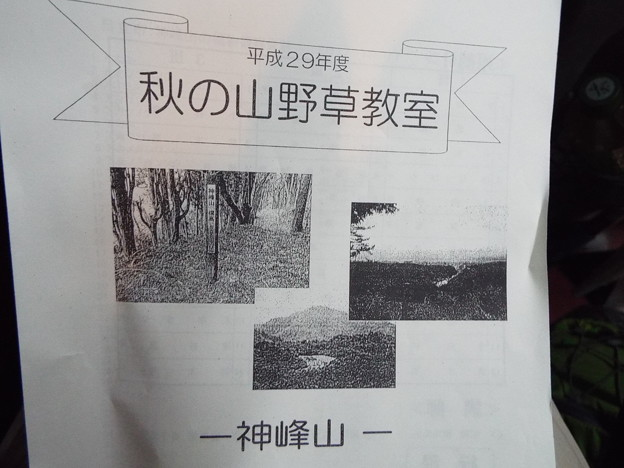 1710170012秋の山野草教室神峰山