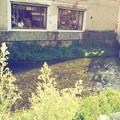 写真: 川沿いのカフェ