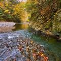 Photos: 紅葉と流れ