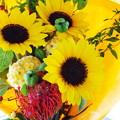 Photos: 花束