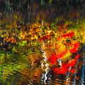 揺れる秋色~(^^♪