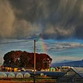 写真: 今朝の虹