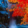 滝と紅葉~(^^♪