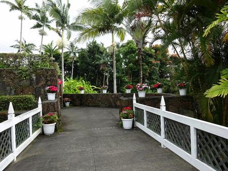 171001-11庭園