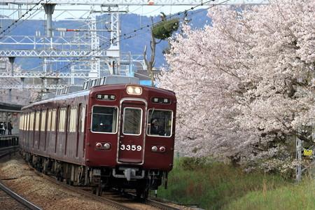 桜と阪急3300系