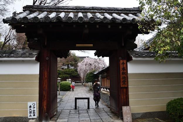 千本釈迦堂の山門