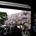 醍醐寺三宝院入り口