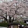 京都五山の第三位