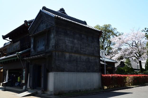 桜と蔵のある風景