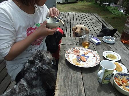 食べる朝食