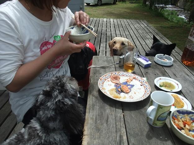 Photos: 食べる朝食