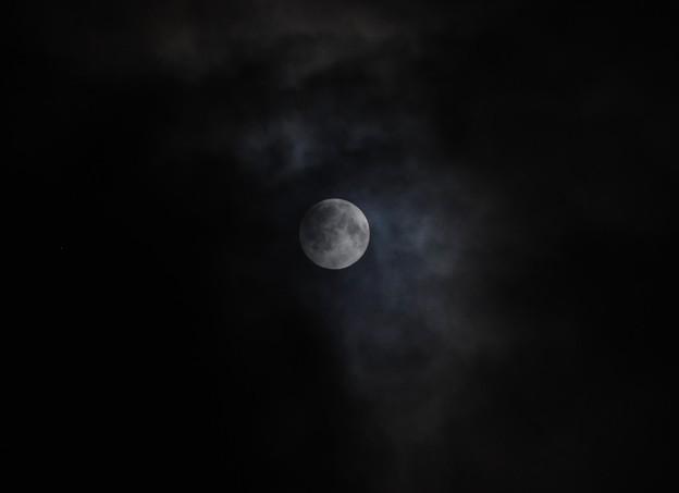 写真: 立秋の月