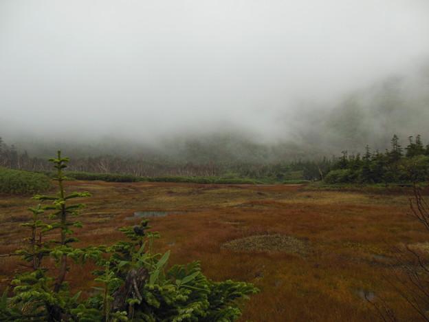写真: '16秋旅 煙る湿原
